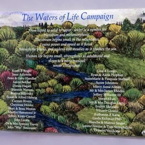Waters of Life Campaign